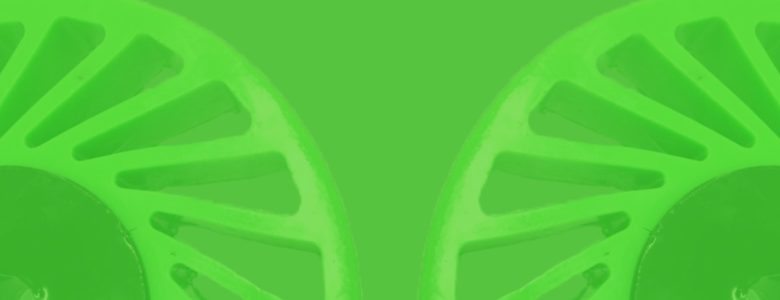 Polyurethane, the Eco friendly Product